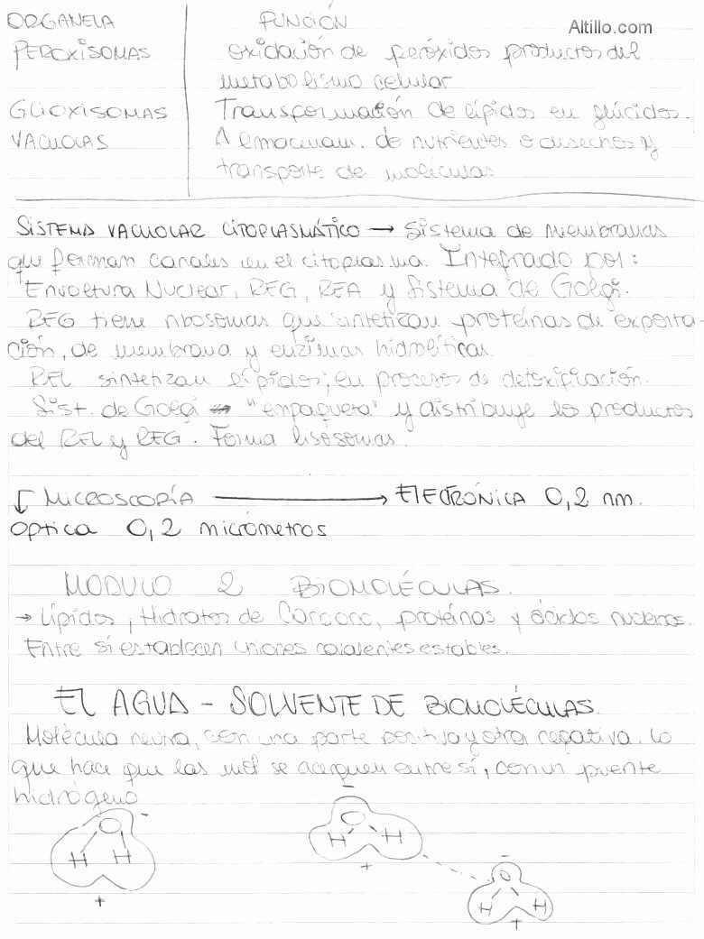 uba cbc biologia resumen para el primer parcial